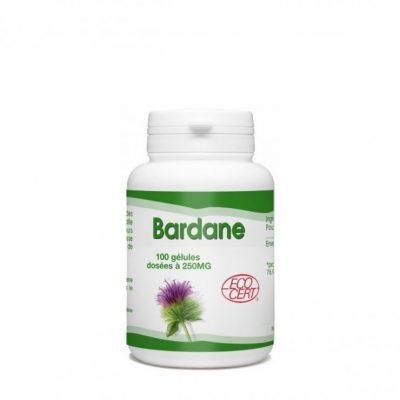 gph-diffusion-bardane-100-gelules