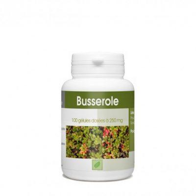 gph-diffusion-busserole-250-mg-100-gelules