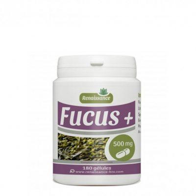gph-diffusion-fucus-180-gelules